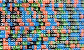 alanphillips_-_DNA_sequences