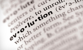 firebrandphotography_-_evolution