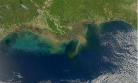 NASA_Sediment_in_the_Gulf_of_Mexico