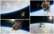 A beautiful bonsai tree and bouquet of flowers were launched into space