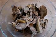 New species of mushroom found in commercial packet
