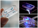 Organs-on-a-chip technology takes the guesswork out of drug testing