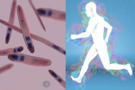 You have a bacterial 'aura' that follows you around